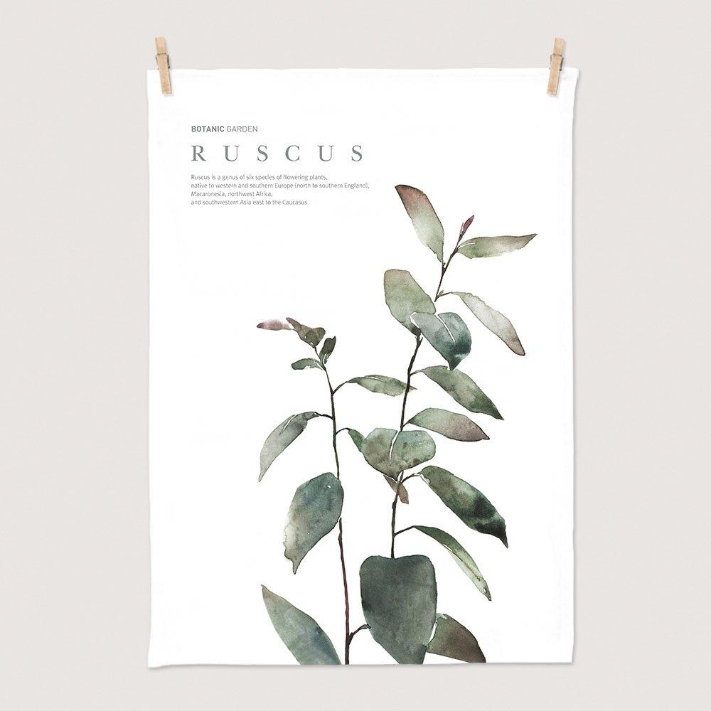 [패브릭포스터] 세렌디피티 루스커스 50x70cm