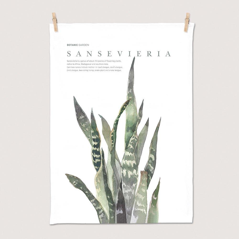[패브릭포스터] 세렌디피티 산세베리아 50x70cm