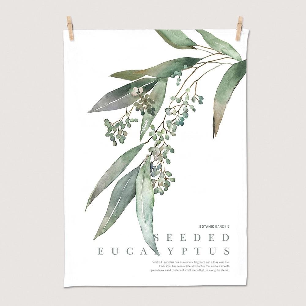 [패브릭포스터] 세렌디피티 씨드유칼립투스 50x70cm