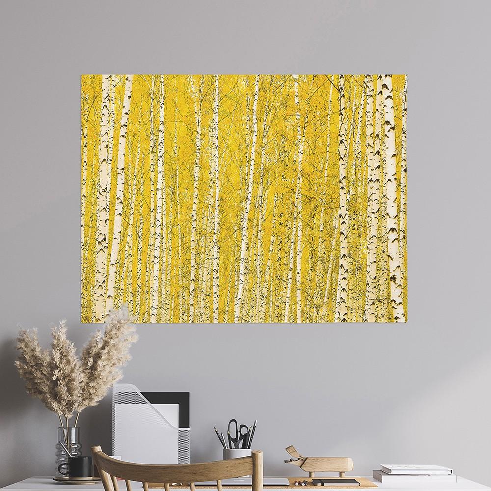 [패브릭포스터] 황금자작나무숲 90x73cm